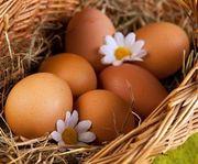 Яйцо и приворот